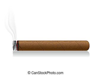 矢量, 被隔离, 插圖, 雪茄