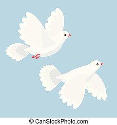 矢量, 鴿子, 飛行, 二, 插圖