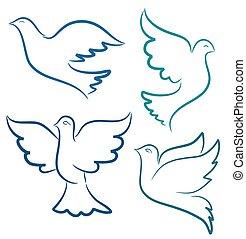 矢量, 鴿, 飛行, 黑色半面畫像, 插圖