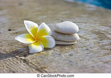 石頭, 礦泉, 旅館, 花