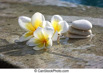 石頭, 礦泉, 花, 旅館
