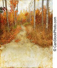 秋天, 形跡, 樹林, grunge, 背景