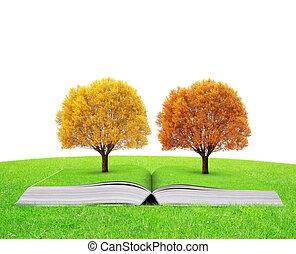 秋天, 書, 樹, 鮮艷, 自然