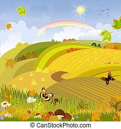 秋天, expanses, 蘑菇, 背景, 鄉村的地形