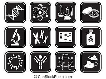 科學, 生物學, 圖象