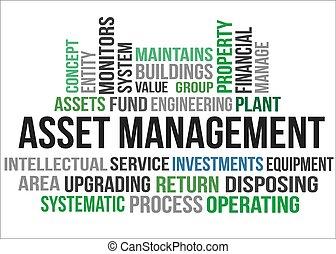 管理, 資產
