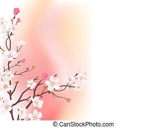 粉紅背景, 光, 開花, 樹枝