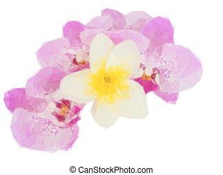 粉紅色, 行, 花, 蘭花