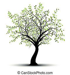 綠色白色, 矢量, 樹, 背景