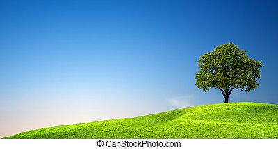 綠色的樹, 傍晚