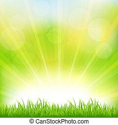 綠色的草, sunburst, 背景