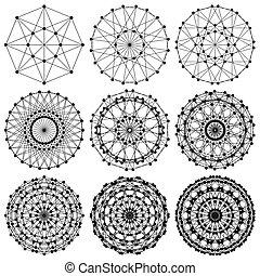 网絡, 分數維, dna, 分子, ...