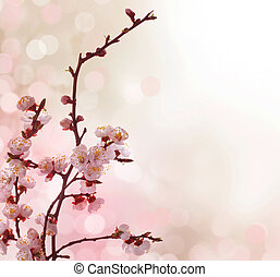 美麗, 春天, 摘要, 邊框