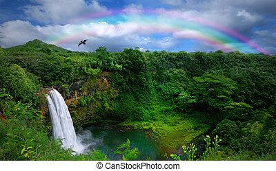 美麗, 頂部, 瀑布, 夏威夷, 看法