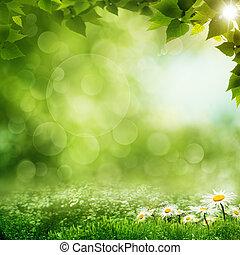 美麗, eco, 背景, 早晨, 森林, 綠色