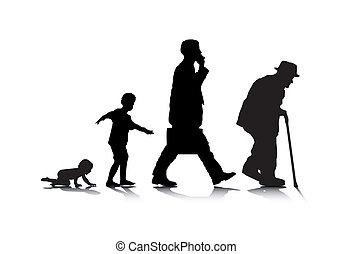 老化, 人類