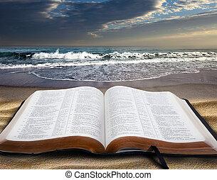 聖經, 海灘
