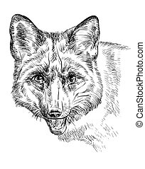 肖像, 狐狸, 矢量