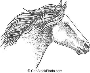 肖像, 馬, 白色, 略述, 鉛筆