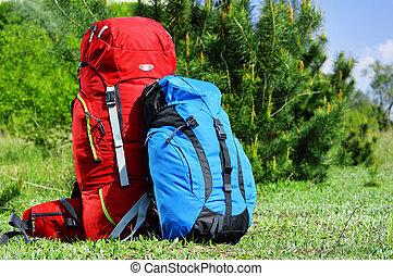 背包, 草地, 二, touristic