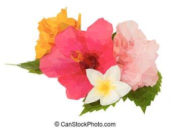 芙蓉屬的植物, 花, 鮮艷