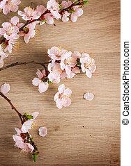 花, 春天, 在上方, 背景, 木制