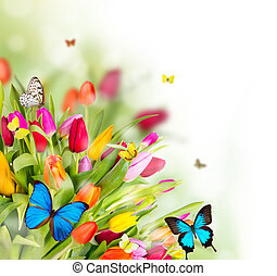 花, 春天, 蝴蝶, 美麗