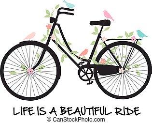 花, 自行車, 鳥