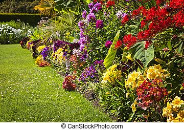 花, 花園, 鮮艷