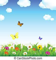 花, 草地, 蝴蝶