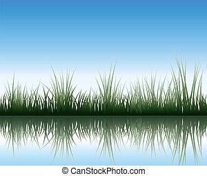 草地, 反映