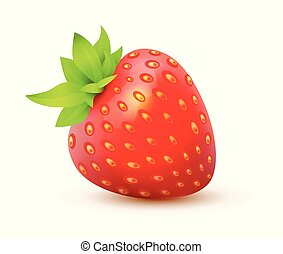 草莓, -, 多汁, 插圖, 被隔离, 現實, 單個, 矢量, berry., 圖象