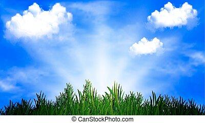 草, 陽光普照, 背景