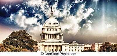華盛頓, 天空, 州議會大廈, 植物