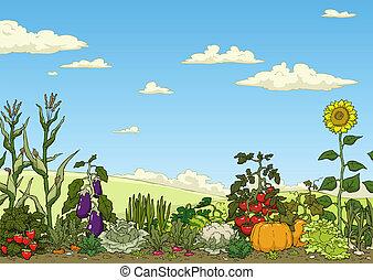 蔬菜花園, 床
