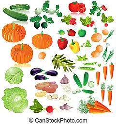 蔬菜, 被隔离, 彙整