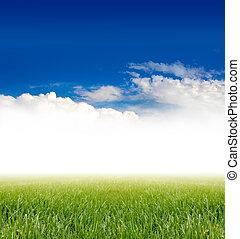 藍綠色, 草, 天空, 在下面