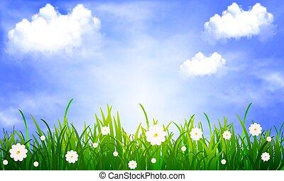 藍色, 云霧, 天空, 背景, 草, 雛菊