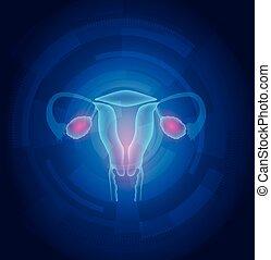 藍色, 女性, 摘要, 背景, 子宮, 技術