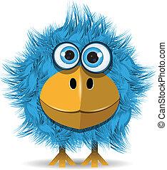 藍色, 有趣, 鳥