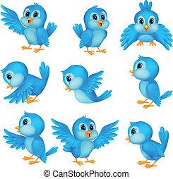 藍色, 漂亮, 鳥, 卡通