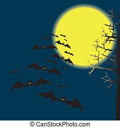 蝙蝠, 天空, 夜晚
