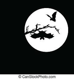 蝙蝠, 矢量, 黑色半面畫像, 月亮