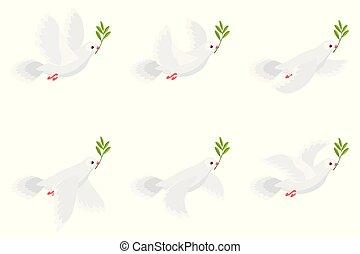表, 分支, 飛行, 被隔离, 插圖, 動畫背景, 藏品, 橄欖, 潛的白色, 子畫面