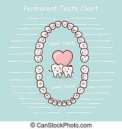 記錄, 永久, 圖表, 牙齒