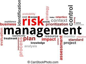 詞, 管理, -, 風險, 雲