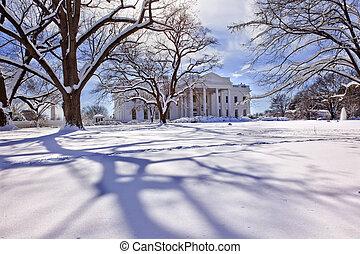 賓夕法尼亞, 房子, 以後, 華盛頓, 雪, 樹, dc, ave, 白色