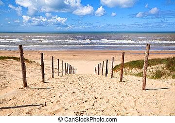 路徑, 海灘, 北方, 沙, 海