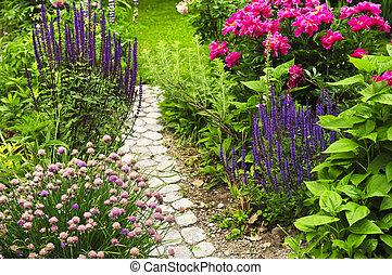 路徑, 花園, 開花