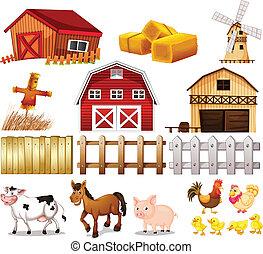 農場, 事情, 動物, 發現